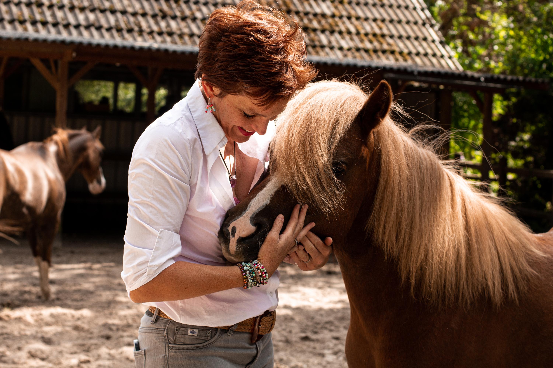 paardencoach Apeldoorn Gelderlandh Gelderland